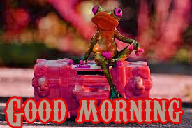 Funny Good Morning Wishes Images Wallpaper Pics Photo Download