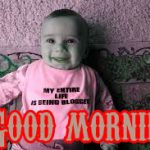 456+ Funny Good Morning Wishes Images Pictures Download HD