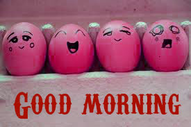 Funny Good Morning Wishes Images Photo Pics HD Download