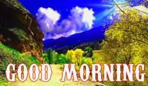 Beautiful Good Morning Images Pictures Pics Download for Whatsaap