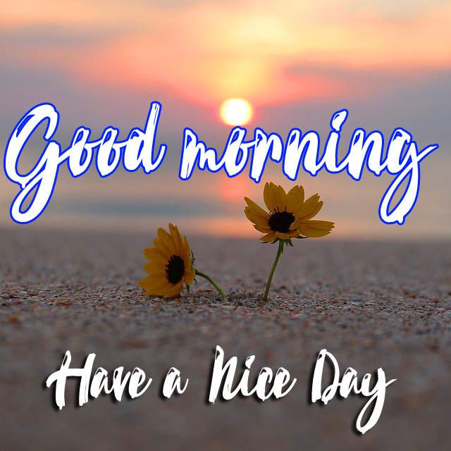 good morning Wallpaper HD 4