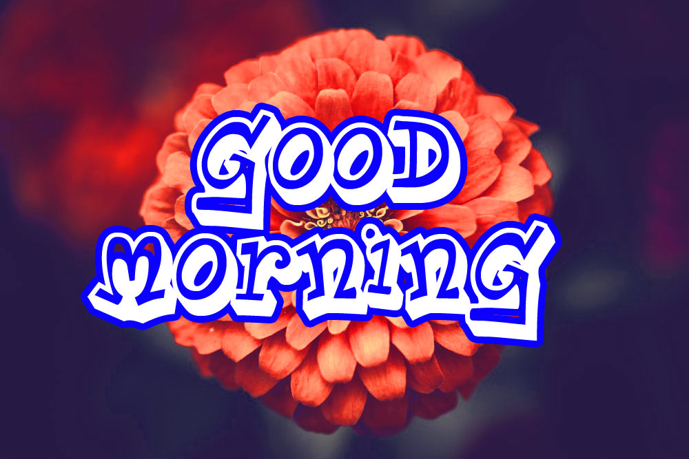 Good Morning 3D Images Pics Download
