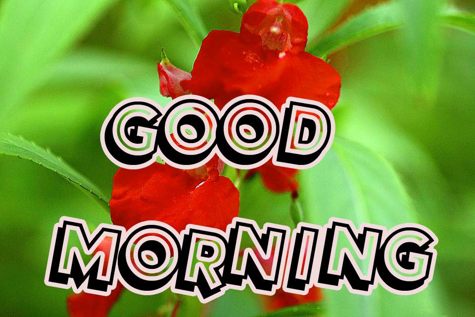 Good Morning 3D Images Pics HD Download