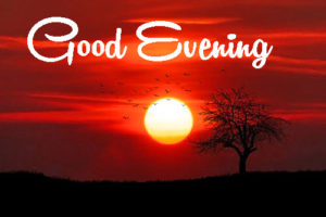 Gud Evening Images photo wallpaper free download