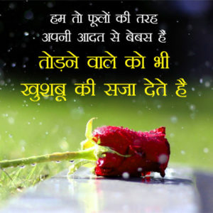 311 Love Whatsapp Status Images In Hindi Good Morning Images