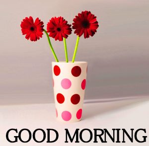 Good Morning Images Photo Wallpaper Free New