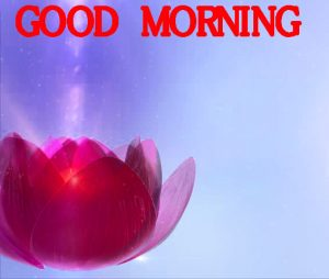 Good Morning Images Wallpaper Photo Pics Free For FB