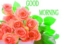 Good Morning Images Pics HD Download New & Update