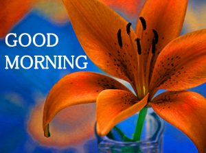 Good Morning Images Wallpaper Pic for Facebook