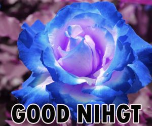 Beautiful Good Night Wishes Images Photo for Lover HD Download