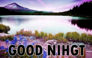 Beautiful Good Night Wishes Images Download