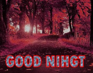 Beautiful Good Night Wishes Images Wallpaper Pictures Free Download