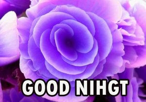 Beautiful Good Night Wishes Images Photo for Wallpaper Download