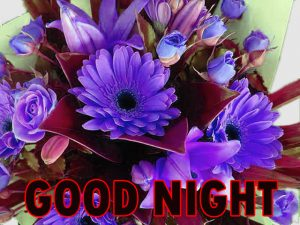 Beautiful Good Night Wishes Images Wallpaper Pic Free Download