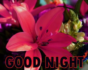 Beautiful Good Night Wishes Images Wallpaper Pic Download