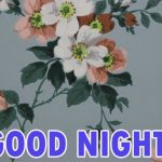 421+ Beautiful Good Night Wishes Images Pics Wallpaper for Whatsapp