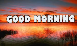 Gd mrng Wishes Images Wallpaper for Whatsapp