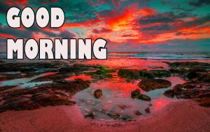 Gd mrng Wishes Images Wallpaper Pictures for Whatsapp