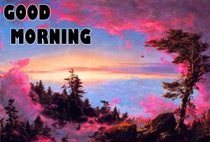 Gd mrng Wishes Images Wallpaper Pic for Whatsapp