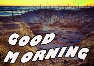 Gd mrng Wishes Images Photo HD Download