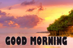 Gd mrng Wishes Images Wallpaper Pics Download
