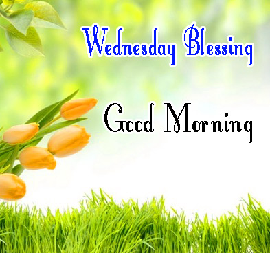 Good Morning Wednesday Images Free Download