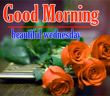 Good Morning Wednesday Pics Download