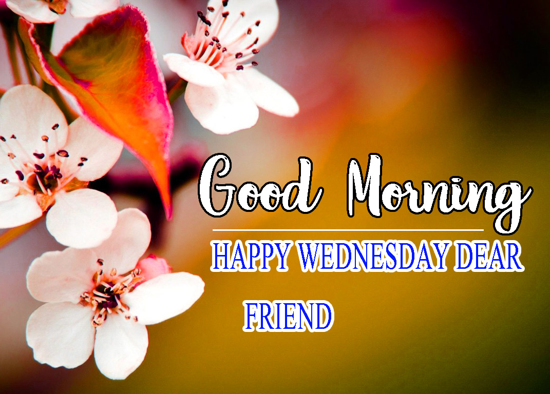 Good Morning Wednesday Wallpaper Pics for Facebook
