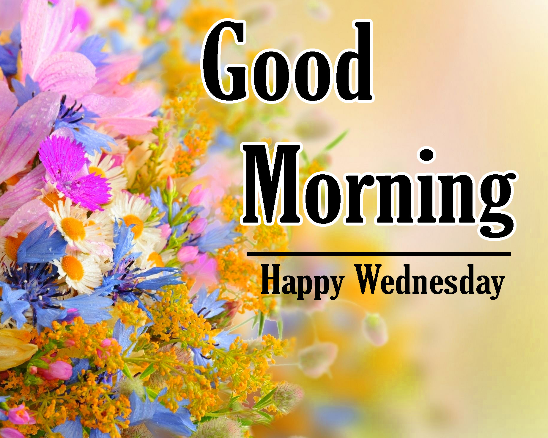 Good Morning Wednesday Photo for Facebook