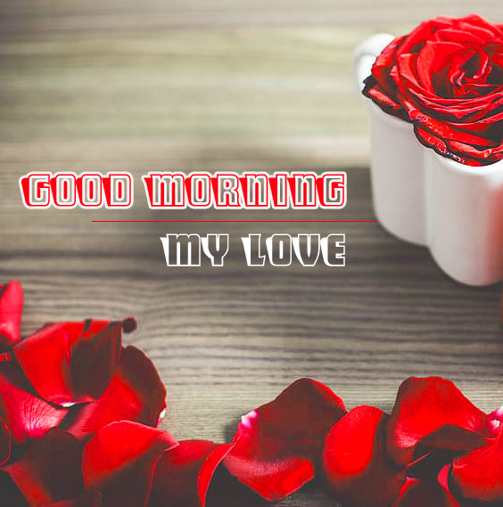 Love Couple Good Morning Images With Red Rose Free