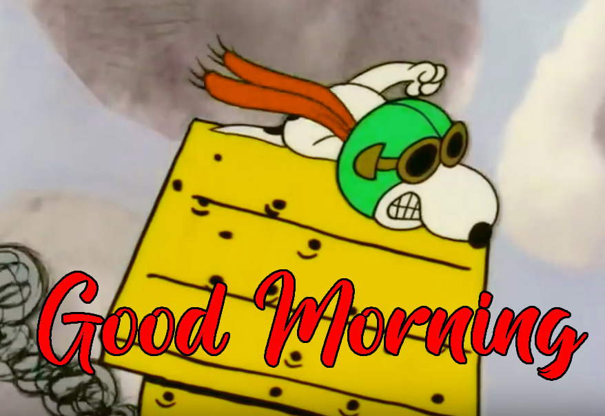 Snoopy Good Morning Wishes 11
