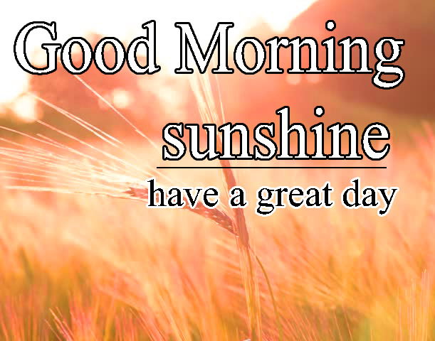 Sunsine Good Morning Images