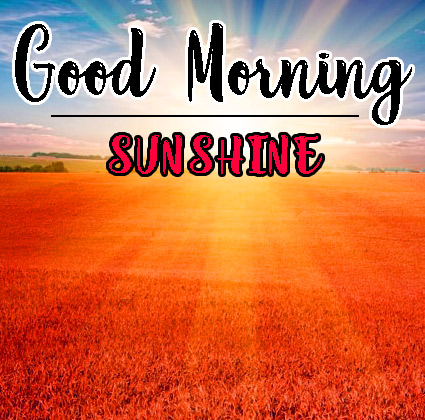Sunsine Good Morning Images HD