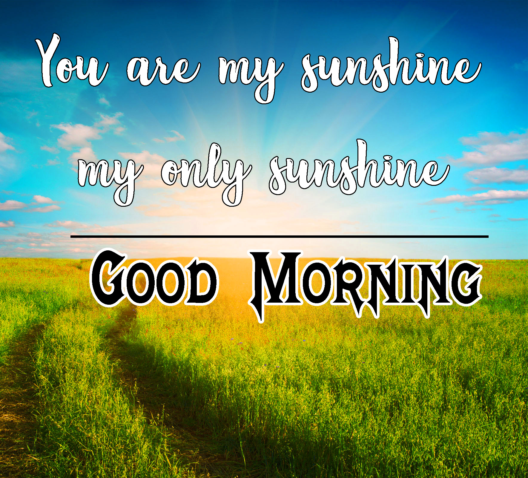 Sunsine Good Morning Images 20