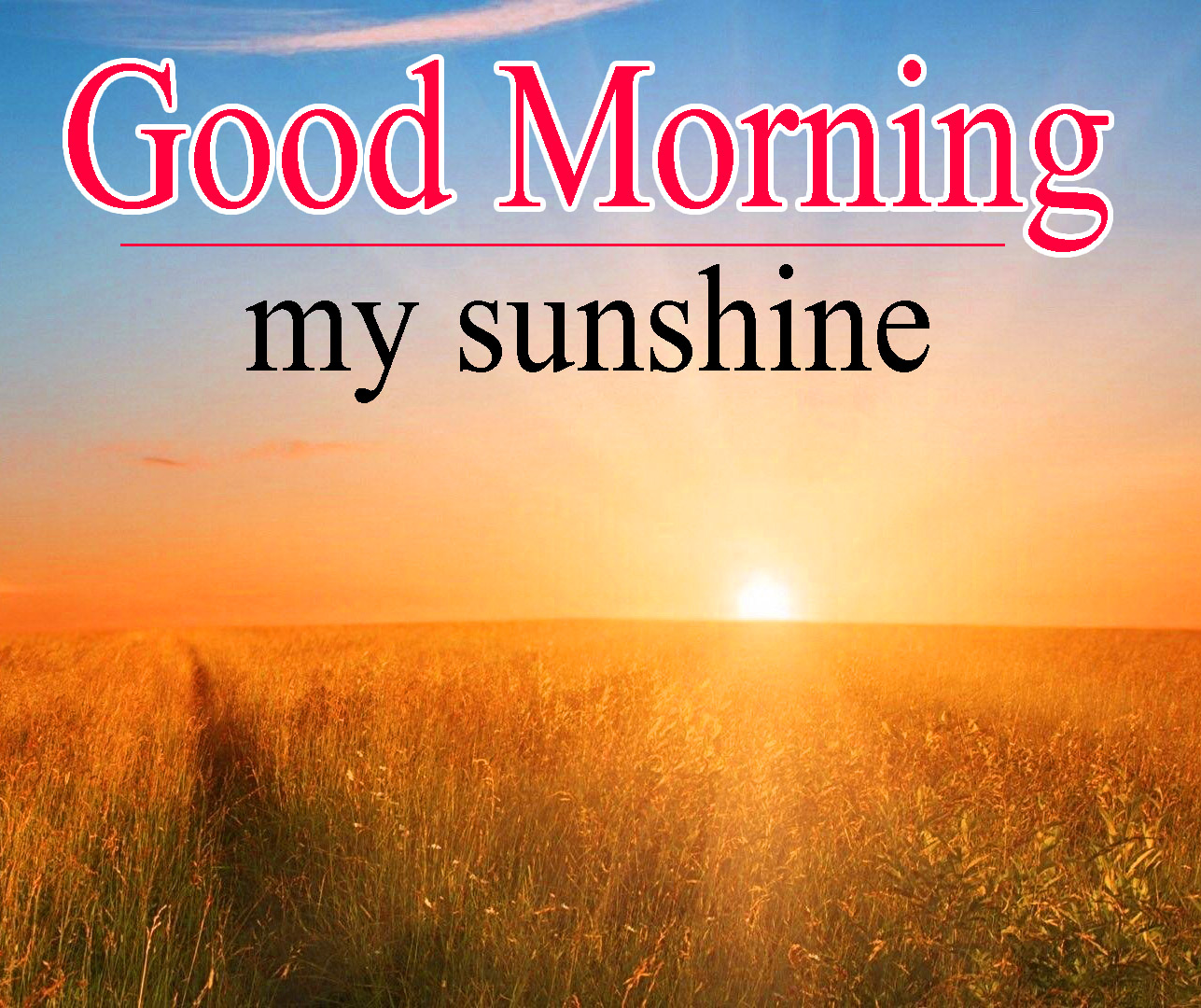 Sunsine Good Morning Images Photo Free Download