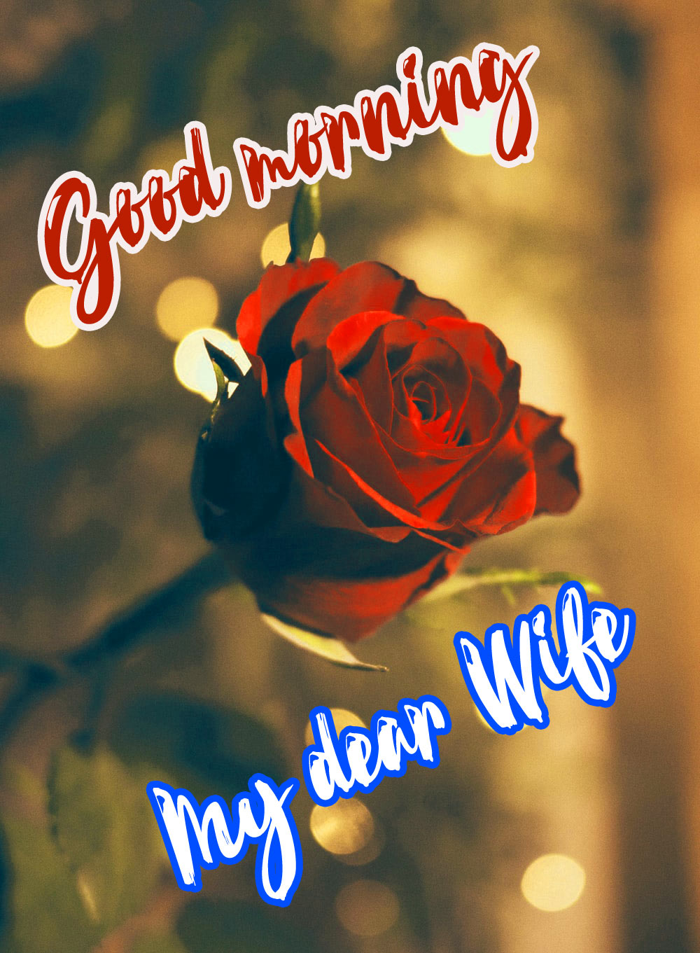 Wife Good Morning Photo Images Free