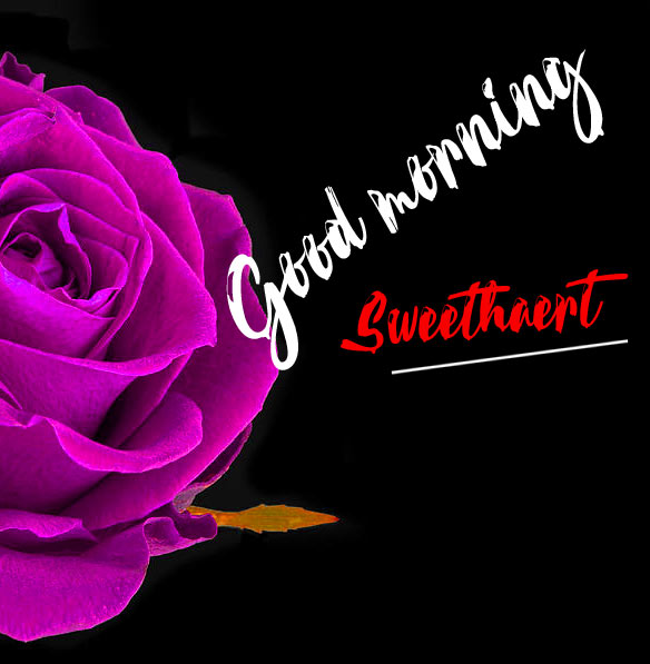Wife Good Morning Pics Wallpaper pictures