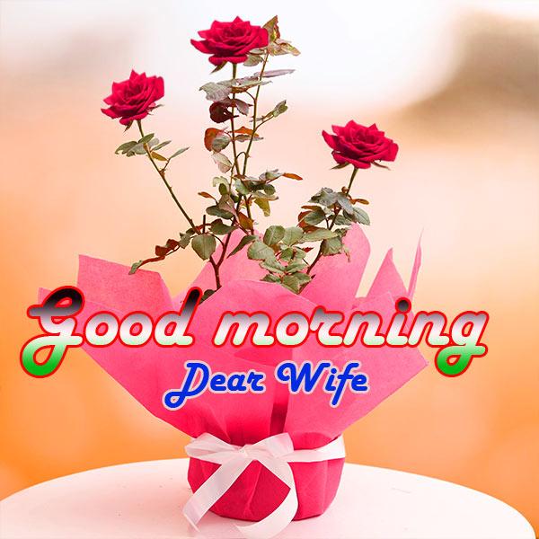 Wife Good Morning Pics Wallpaper HD