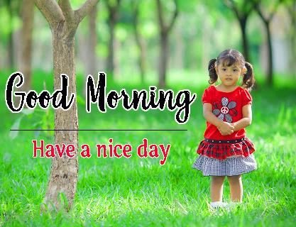 Beautiful Free good Morning Photo