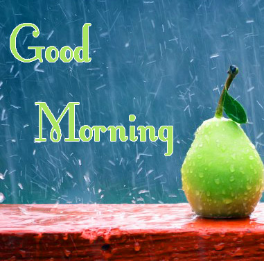 Beautiful Free good Morning Pics Download