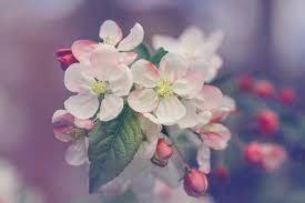 Beautiful Heart Touching Whatsapp Dp Profile Images photo wallpaper free hd download