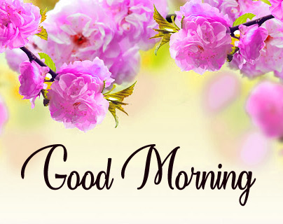 Download The Good Morning Images photo for Facebook