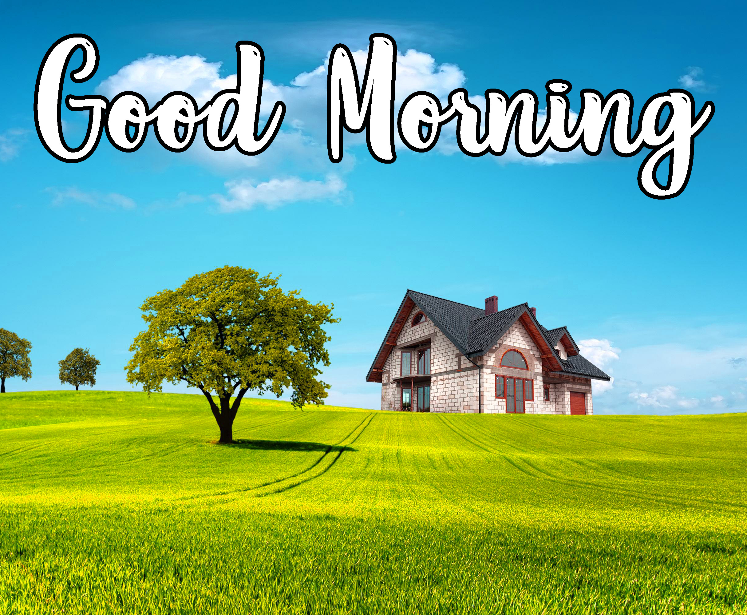 Good Morning Pics Download for Facebook