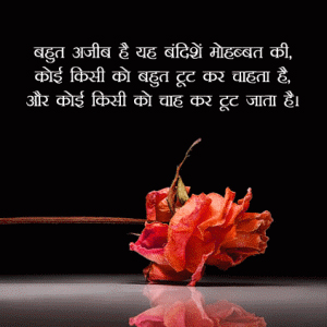 Hindi Whatsapp DP Status Profile Images Wallpaper Free