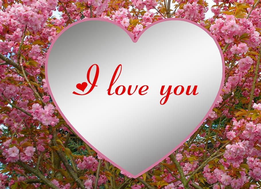 I Love You Images Wallpaper For Husband 6