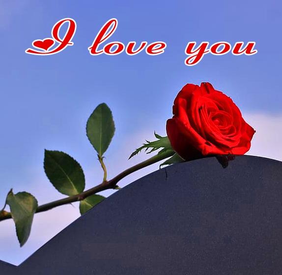 I Love You Images Wallpaper For Husband 9
