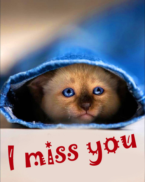 I miss you Images Wallpaper HD