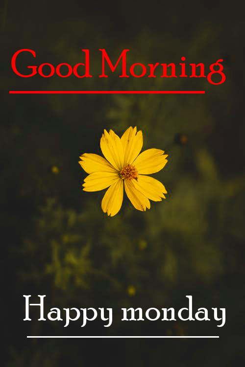 Monday Good Morning Images Wallpaper Free Download for Friend