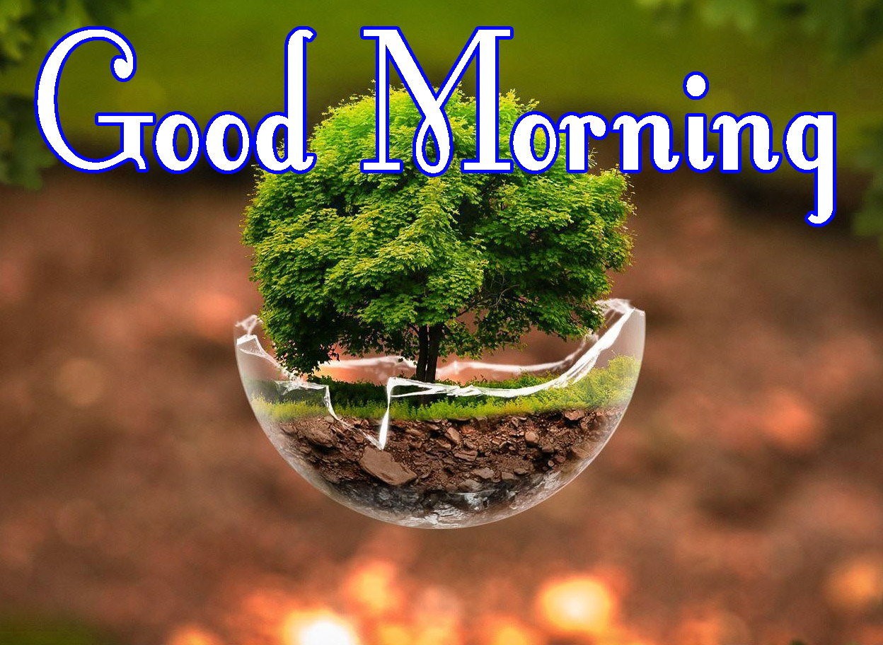 Nature Good Morning Pics for Facebook