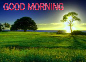 Nature Good Morning Images pics photo free hd